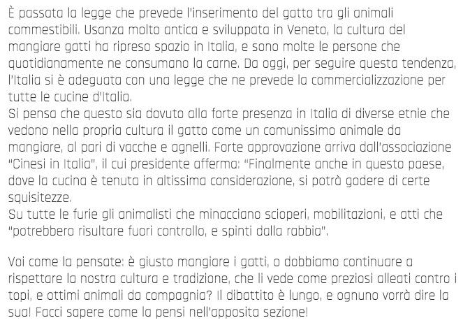 Da Oggi è Possibile Acquistare Carne di GATTO In Tutti i Supermercati Italiani. È UFFICIALE! 1