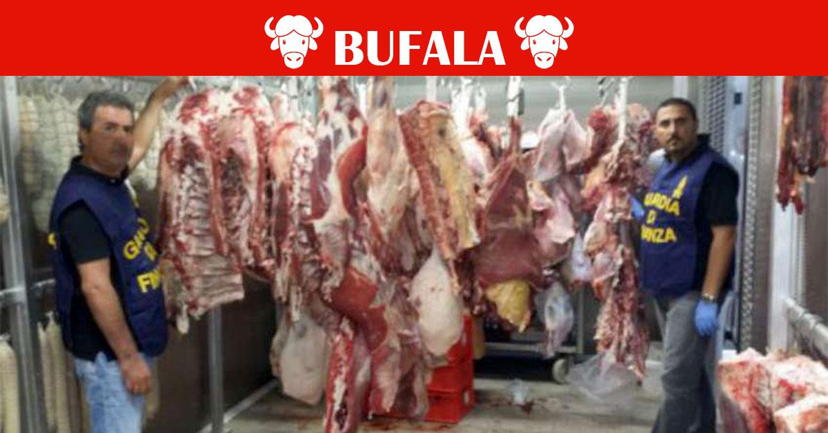 carne bovina infettata da AIDS