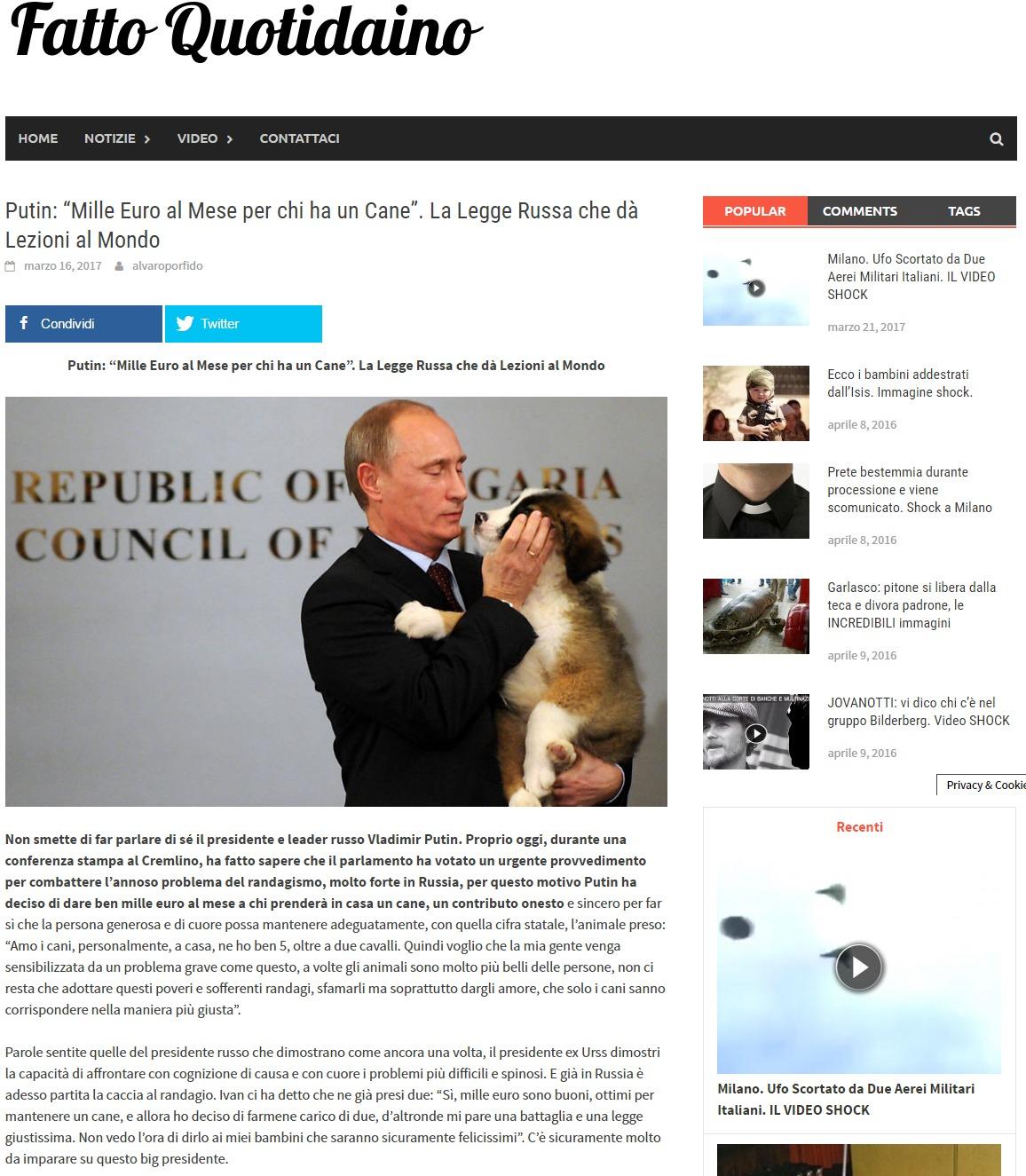 Mille Euro al Mese per chi ha un Cane. La Legge Russa che dà Lezioni al Mondo 1
